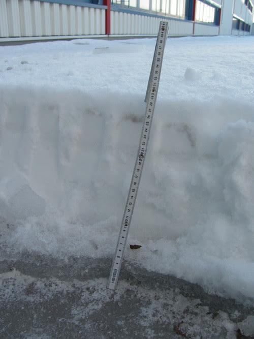 dachlasten rechtzeitig erkennen schneealarm kann leben retten umweltdienstleister. Black Bedroom Furniture Sets. Home Design Ideas