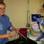 Entwicklerin Maria Preuss assistiert beim Test des von ihr entwickelten Trainingsgerät- Prototypen in der Sana-Klinik in Lübeck – hier bei der Endosonographie an einem Schweinemagen. (Quelle: FZU)
