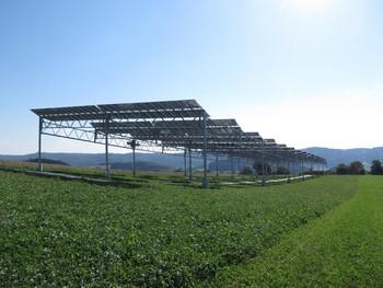 Die Agrophotovoltaik-Pilotanlage in Heggelbach kombiniert Energie- und Nahrungsmittelproduktion | Bildquelle: Fraunhofer ISE