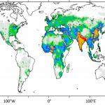 Tödliches Weiter so: Wenn die Luftverschmutzung wie bisher mit wachsender Bevölkerung und steigender Wirtschaftskraft zunimmt, wird die Zahl der Menschen, die aufgrund der Schadstoffe in der Luft sterben, vom Jahr 2010 bis zum Jahr 2050 deutlich steigen. Das haben Berechnungen eines internationalen Teams um Forscher des Max-Planck-Instituts für Chemie ergeben. Die Farbskala steht für den Zuwachs an Todesfällen aufgrund einer zu erwartenden stärkeren Luftverschmutzung: weiß – keine Zunahme; rot – 9000 Todesfälle mehr pro Jahr. (Quelle: Nature 2015/mpic.de)