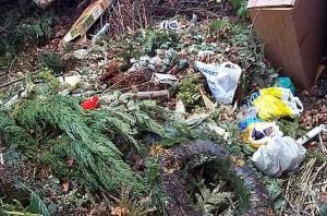 Kasten/Bild Grünabfall: Anwendungsbereich der BioAbfV  Die im Jahre 2012 novellierte BioAbfV regelt die umweltverträgliche Verwertung von getrennt erfassten biologisch abbaubaren Abfällen (Bioabfälle), die auf landwirtschaftlich, forstwirtschaftlich und gärtnerisch genutzten Böden als Düngemittel aufgebracht werden. Aufgrund der Rechtsgrundlage § 8 KrW-/AbfG, auf der sich auch die Novelle der Verordnung gründet, ist der Anwendungsbereich der BioAbfV weiterhin sowohl auf eine bestimmte stoffliche Nutzung i.S.d. § 2 Satz 1 Nummer 1 Düngegesetz (DüngeG) als auch auf die Anwendung auf im Erwerbsanbau genutzte Böden beschränkt. Dafür sind insbesondere Vorgaben zu einer hygienisierenden und biologisch stabilisierenden Behandlung (nunmehr getrennt geregelt), Anforderungen an die Seuchen- und Phytohygiene, höchstzulässige Schadstoff- und Fremdstoffgehalte, Aufbringungshöchstmengen sowie Qualitätskontrollen, Dokumentations- und Nachweispflichten festgelegt.